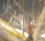 amish cave (4)
