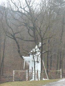 amish ice tree
