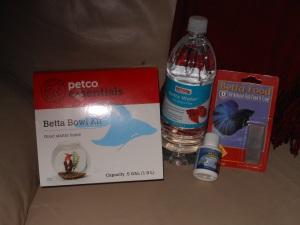 betta (2)