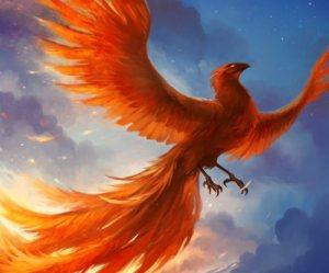 phoenix_by_sandara-d4o2ewx